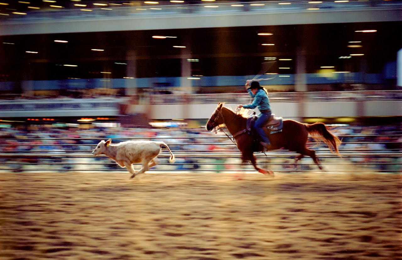 Rodeo at Colonial Downs